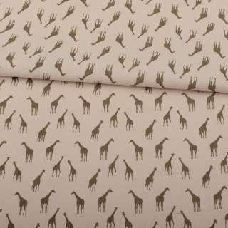 Коттон бежевый, коричневые жирафы, ш.150