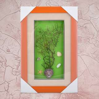 картина из морских ракушек на зеленом фоне 24х37