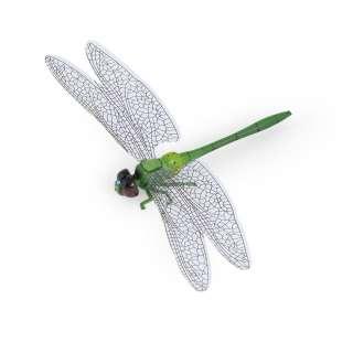 Магнит декоративный Стрекоза 13х9 см зеленая