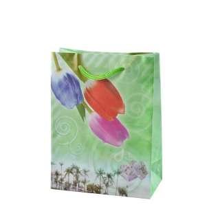 Пакет подарочный 16х12х6 см с тюльпанами зеленый