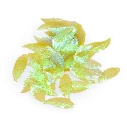 Пайетка хамелеон листик 28х10мм 25 г прозрачная зеленая